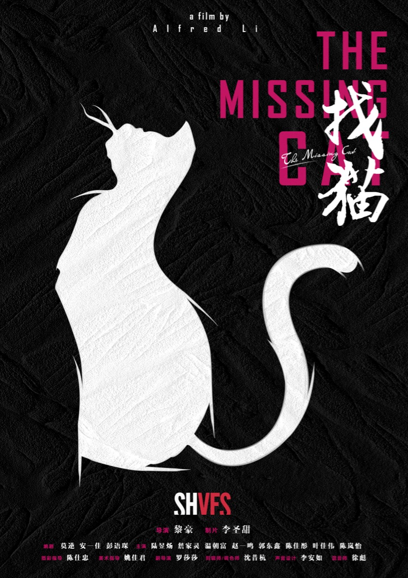 找猫 The Missing Cat
